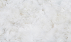 Alpaca Fur Full Color Sample Sets