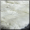 Suri Alpaca Fur Close Up