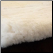 00, Adult Hua Alpaca Fur Close Up