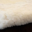 Adult Hua Alpaca Fur Close Up